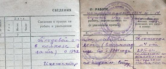тыло-дайнега_1