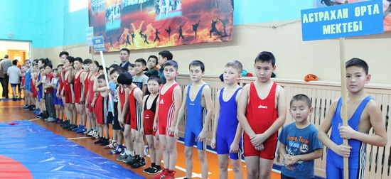 спорт-борьба_2