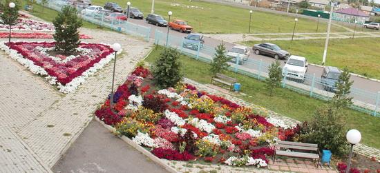 цветы-больница_2